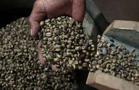 HARGA KOPI ROBUSTA (5 November 2014): Berbalik Melemah 0,05% Pada Awal Perdagangan