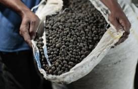 KOPI ROBUSTA (6 November 2014): Awal Perdagangan Harga Melemah 0,54%