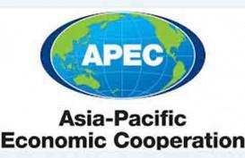 Indonesia Minta Wacana FTAAP Dibentuk di Luar APEC