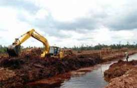Aturan Terbaru Gambut untuk Seimbangkan Fungsi Ekosistem
