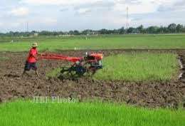 KEJAR SWSEMBADA PANGAN: Kementan akan Distribusi 7.000 Traktor