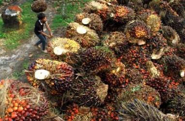 BAKRIE SUMATERA PLANTATION (UNSP) Cari Investor Rp600 Miliar