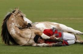 Analisis DNA Ubah Kuda Kuno Jadi Kuda Modern