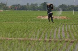 Bandung Tetapkan Lahan Abadi Pertanian 32.000 Ha