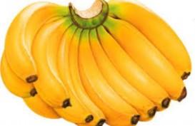 11 Alasan Makan Pisang Lebih Bermanfaat Dibanding Apel