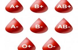 Perempuan Dengan Golongan Darah B Rentan Kena Diabetes