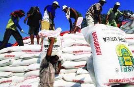Keterlambatan Distribusi Pupuk Ancam Produksi Tanaman Pangan