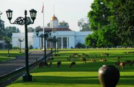 Nasi Goreng Kaki Lima Masuk Istana Bogor