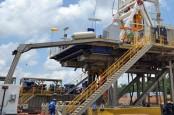 Ekspor Minyak AS Diprediksi Lampaui Produksi Empat Negara OPEC Ini