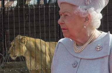 Ratu Elizabeth II Peringati 65 Tahun Bertahta