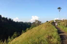 Menikmati 'Surga Tersembunyi' Ubud Bali di Bukit Campuhan