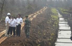 Jokowi Ingin Kalteng Kembangkan Industri Hilir