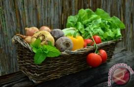 Sayuran Hijau & Apel Bantu Kurangi Risiko Penyakit Paru-paru