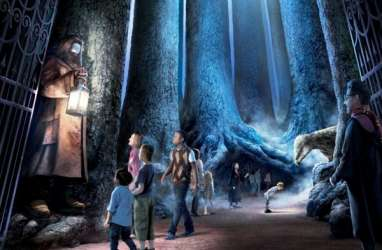 Hutan Terlarang Harry Potter Dibuka untuk Umum
