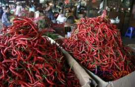 Harga Cabai Merah di Sejumlah Kabupaten dan Pasar Induk Turun