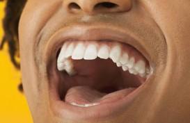 Wah, Banyak Orang Dewasa Mengidap Penyakit Mulut