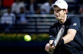 Andy Murray Absen di Tenis Piala Davis
