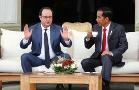 Presiden Prancis Ingin Perdalam Kemitraan di Energi Terbarukan