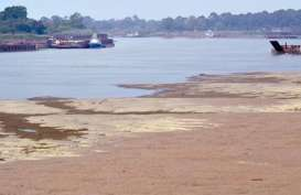 Pemerintah Segera Kelola Perikanan Sungai