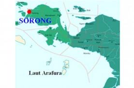 Arkeolog Papua Temukan Gua Prasejarah di Sorong