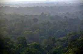 Pemerintah Akui Legalitas Hutan Adat Bengkayang