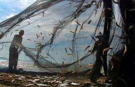 JAPFA Kampanyekan Budaya Makan Ikan
