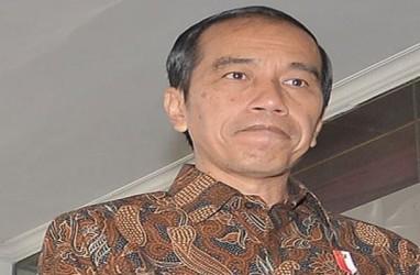 Presiden Jokowi: Skouw Harus Jadi Kebanggaan Papua, Kebanggan Indonesia