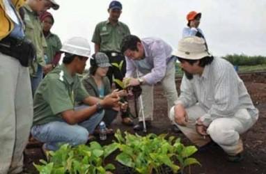 Restorasi Hutan Perlu Upaya Bersama