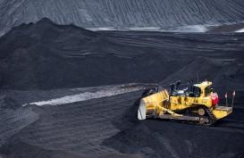 Petakan Potensi Coking Coal Papua, Eksplorasi Detail Diperlukan