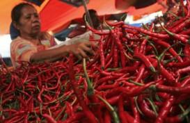 Operasi Pasar, Bulog Prioritaskan Cabai Merah di Padang