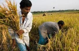 Bangladesh Berpuasa Ramadan Mulai Minggu
