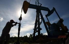 Pemerintah Masih Cari Pembeli Gas Masela