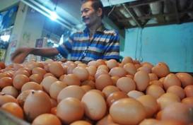 Harga Telur Ayam di Jakarta Naik