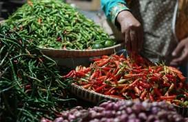 Asosiasi Pedagang Pasar Yakini Harga Cabai Segera Pulih