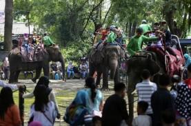 Libur Lebaran, Kebun Binatang Surabaya Dikunjungi…