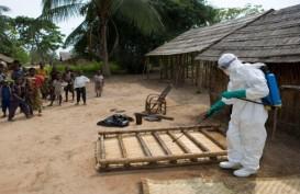 WHO: Kasus Ebola di Kongo Telah Berakhir