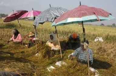 KIK KONAWE : Pemda Diminta Siapkan Lahan Pengganti