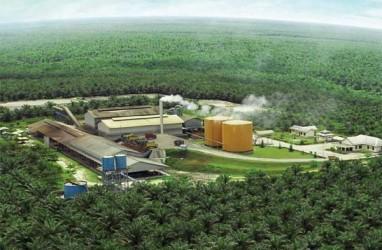 EKSPANSI USAHA : BWPT Akan Tambah 8 Pabrik