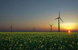 Energi Bersih, PT PJB Teken MoU dengan Perusahaan Abu Dhabi