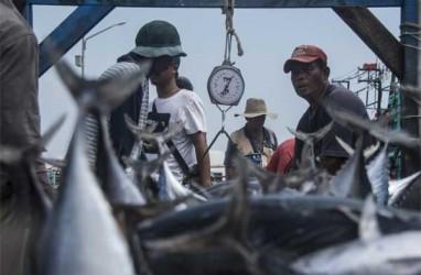 Menteri Susi: Subsidi BBM untuk Nelayan Boleh Dicabut, Asal ...