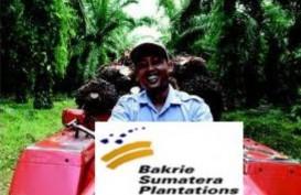 Kinerja Semester I/2017: Penjualan UNSP Susut 3,55%