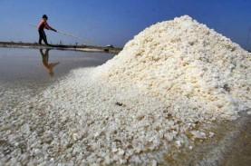 Cerita Arifin, Petambak Garam yang Bisa Produksi Meski…