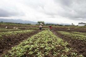 NTB Berharap Bisa Tingkatkan Kapasitas Produksi Pertanian