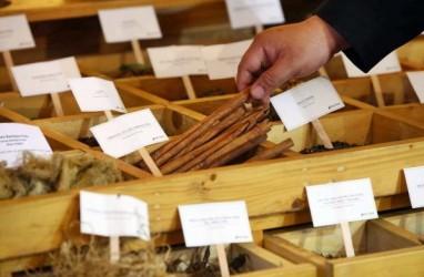 SEKTOR FARMASI : Industri Bahan Baku Dirintis