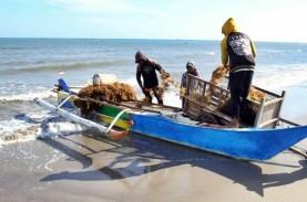 Dengan Blue Economy, Investasi Perikanan Diharapkan…