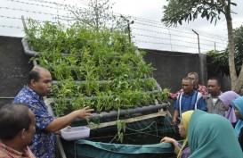 Produksi Komoditas Organik, PJB UP Paiton Gaet Petani