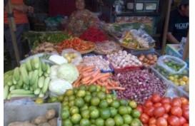 PENGENDALIAN INFLASI : BI Sulut  Tanam 35.000 Bibit Cabai dan Tomat