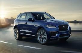 Jaguar Luncurkan SUV F-Pace Terbaru Seharga Rp1,5 Miliar