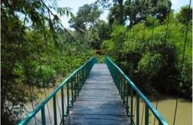 Jembatan Gantung Putus, Puluhan Pelajar Jatuh ke Sungai Sedalam 5 Meter