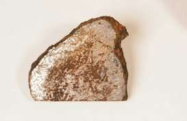 Batu yang Tampak Biasa Ini Berharga Rp1,3 Miliar